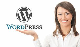 Conhhheça o Curso de WordPress Oferecido pela Academia do Marketting